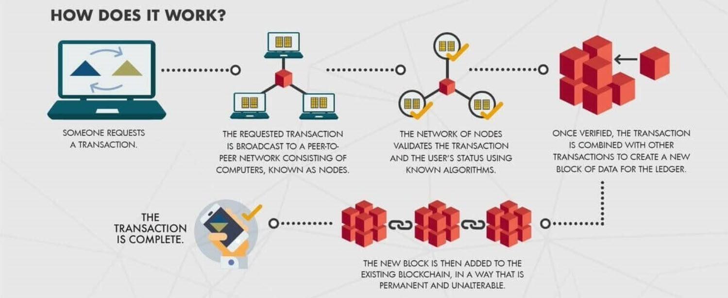 Crypto working infographics